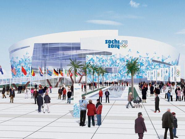 Правительство выплатит ВЭБу «олимпийские затраты» Главой правительства России подписан указ, который обязывает бюджет...