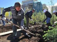 Ландшафтная мастерская «LENOTR-PARK» посадила 5000-е дерево в Москве