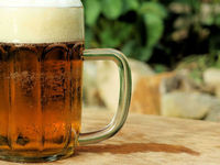 Американские ученые обнаружили в пиве противораковые свойства