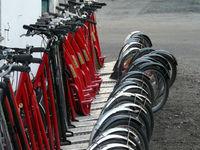 Самокаты в мегаполисах стали популярнее велосипедов
