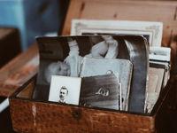Украинцы смогут воспользоваться генеалогической базой данных