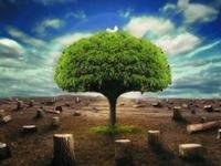 «АХА Страхование» стала лидером рейтинга среди страховых компаний
