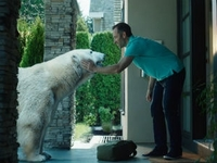 В эфире появилась новая реклама пива «Белый Медведь»