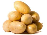 В РФ завезут семенной картофель из трёх стран ЕС