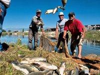 Африканские страны подтвердили «рыбные» соглашения с Евросоюзом