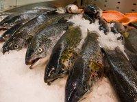 «Мурманский рыбокомбинат» подал в суд на правительство России