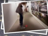 Philips представила «умный» ковролин со светодиодами